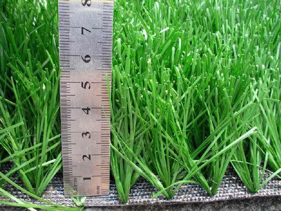 人造草坪6