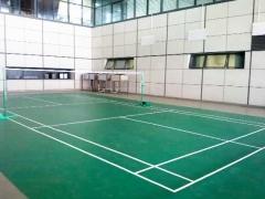 PVC羽毛球场-(4)